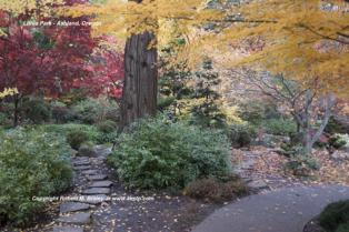 Lithia Park Ashland Oregon